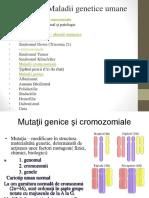 Maladii genetice Umane