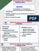 (5) PROCESOS BÁSICOS DEL DESARROLLO