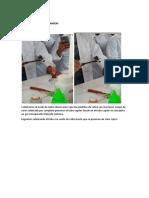 QUMICA ORGANICA -INFORME DE LABORATORIO