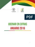 Anuario Udenar Cifras 2016