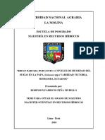 Peña Murillo Robinson Fabricio RIEGO PARCIAL TESIS