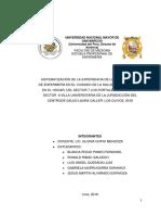 Sistematización Final - (Completar) 30 Nov 2018 2241gupio 04 Dic Vvvvvllll