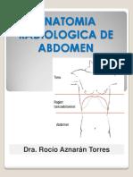 Anatomia Abdomen Radiologica