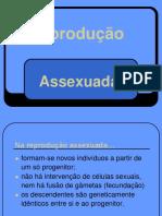 12º ano B2-reproduo-assexuada-2018-2019.docx
