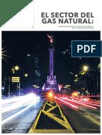 El sector del gas natural