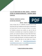 Accion de Inconstitucionalidad Por Enmienda Final