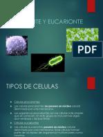 2.1_Clase de Célula Eucariota_UCAD