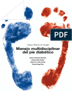 Libro Pie Diabetico 2015_def