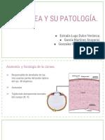 ANATOMÌA PATOLÒGICA DE LA CÓRNEA