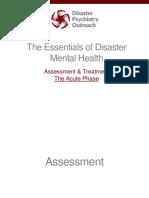 2. Assessment (Acute Phase)