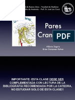 powerpoint de pares craneales