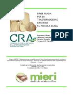 linee guida_caseario.pdf