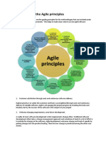 Agile Manifesto and 12 Principles