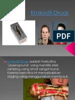 Krokodil Drugs (Dwi Astuti)