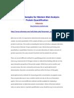 ADVANSTA_ProteinQuantification.docx
