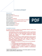 Model Completare Raport 29 IV 2017 Aa