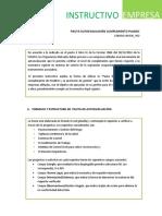 Instructivo Empresa Pauta Autoevaluacion Planesi