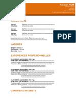 cv-professionnel-orange.docx