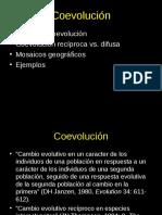 Coevolucion 4