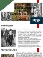 Período Del Caucho 1880 1914