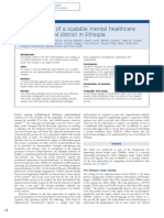 Development of a Scalable Mental Healthcare Plan for a Rural District in Ethiopia