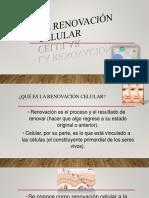 La Renovación Celular