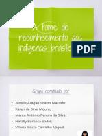 Apresentação PIM 1 - A fome de Reconhecimento dos Indigenas Brasileiros