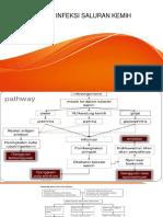 Patofisologi Infeksi Saluran Kemih