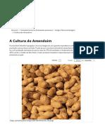 A Cultura do Amendoim.pdf