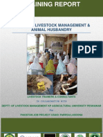 Training on Livestock Management