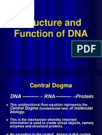Structure-and-function-of-DNA.ppt