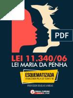 Lei_11.340-06_-_Lei_Maria_da_Penha_-_Esquematizada_e_Atualizada_pela_lei_13.641-18_-_revisado_(1)