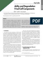 Bruijn Et Al-2008-Fuel Cells