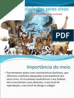 diversidade dos animais.ppt