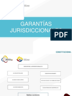 garantias_jurisdiccionales
