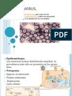 Rotavirus