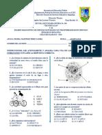 Examen Diagnostico de Ciencias Naturales 1eros Años 18-19