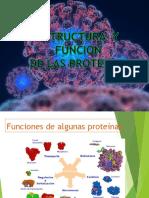 Estructura de la Funcion  de Proteinas