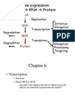 transcription.ppt