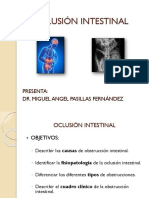 oclusion intestinal|