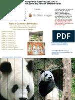 Panda Skip Counting Puzzles