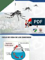 Capacitacion Dengue