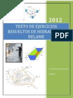 HIDRAULICA 2 NELAME.pdf
