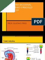 01 Aula - Anatomia Seccional - TC 02.pdf