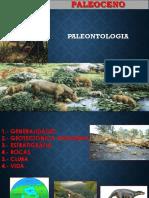 Paleoceno