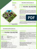 Diplomado Legislacion Forestal y Fauna Silvestre