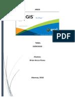Manual de Trabajo ARCGis.docx