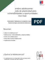 Brain adolescent