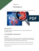 sindromes nefrologicos