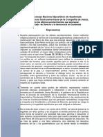 Comunicado Coyuntura Guatemala - CNA